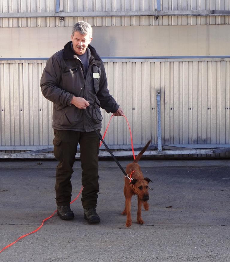 Jägerverein_Toggenburg_Hundegruppe_Übung_Rickenhof (20)