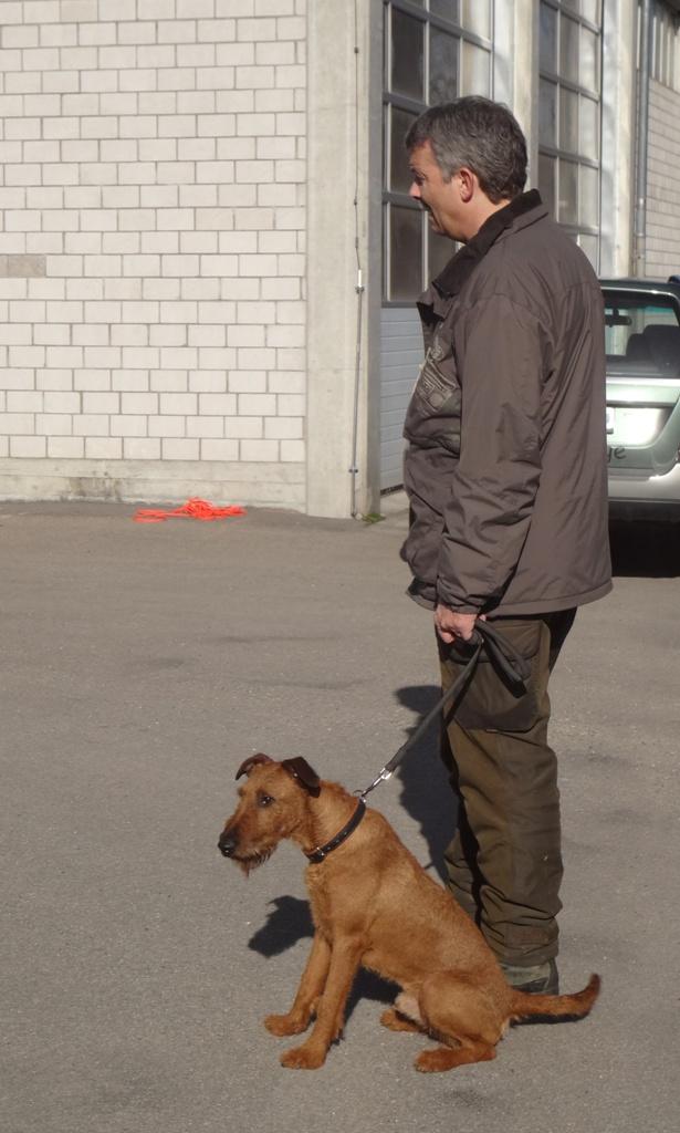 Jägerverein_Toggenburg_Hundegruppe_Übung_Rickenhof (26)