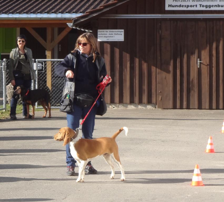 Jägerverein_Toggenburg_Hundegruppe_Übung_Rickenhof (27)